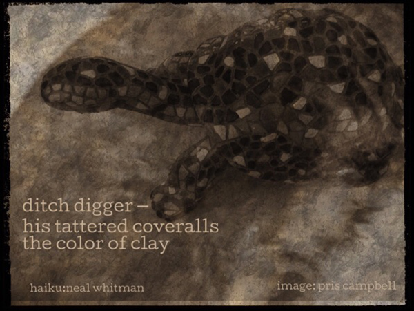 'ditch digger� / his tattered coveralls / the color of clay' by Neal Whitman. Art by Pris Campbell.