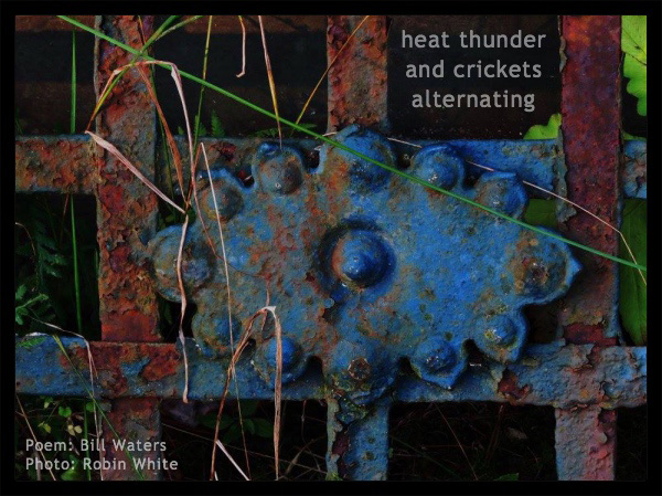 'heat thunder / and crickets / alternating' by Bill Waters. Art by Robin White.