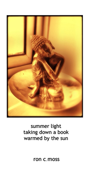 'summer light / taking down a book / warmed by the sun' by Ron Moss