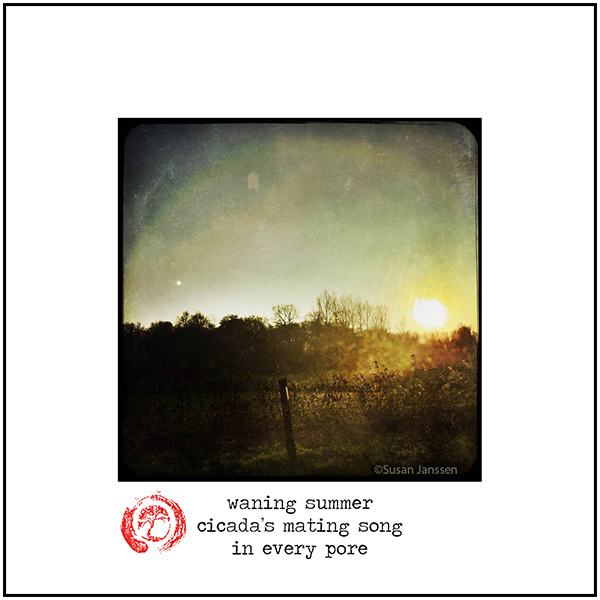 'waning summer / cicada's mating song / in every pore' by Damir Damir. Art by Susan Janssen