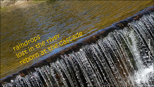 'raindrops / lost in the river / reborn at the cascade' by David Kelly
