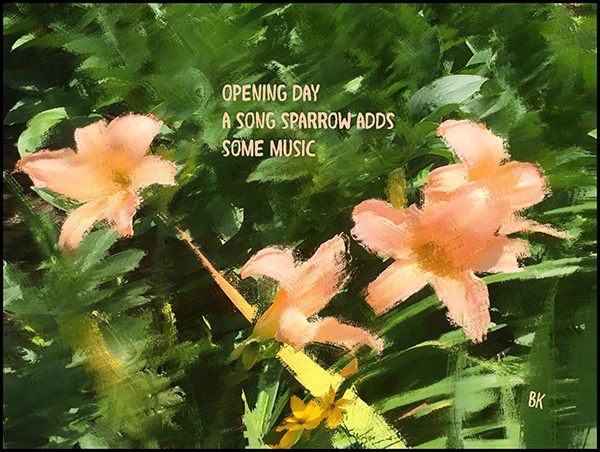 'opening day / a song sparrow adds / some music' by Barbara Kaufmann