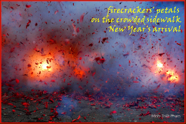 'firecrackers' petals / on the crowded sidewalk / New Year's arrival' by Minh Pham