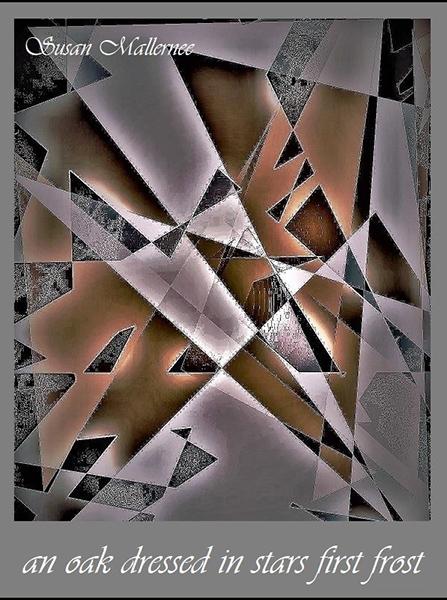 "'an oak dressed in stars first frost"" by Susan Mallernee"
