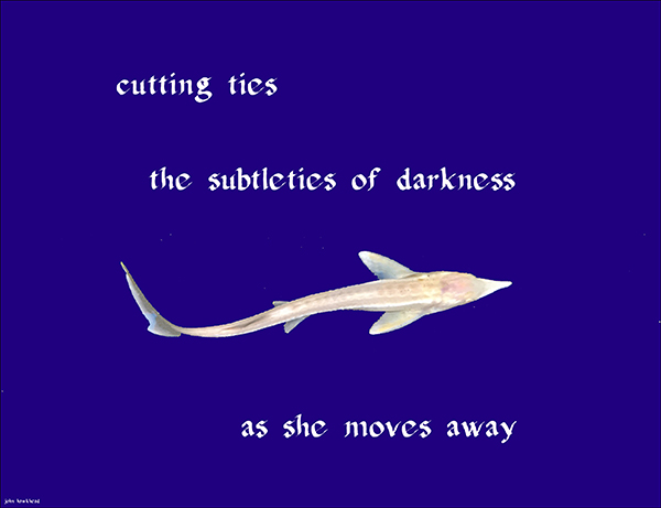 'cutting ties / the subtleties of darkness /  as she moves away' by John Hawkhead