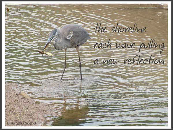 'the shoreline / each wave pulling / a new reflection' by Elizabeth Crocket