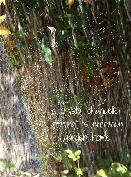"'a crystal chandelier / gracing its entrance / garden home"" by Marietta mcGregor"