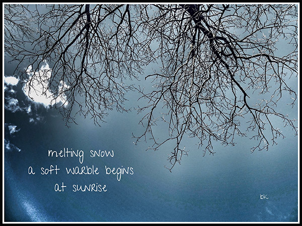 'melting snow / a soft warble begins / at sunrise' by Barbara kaufmann