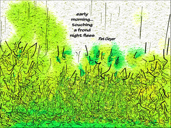 'early / morning... / touching / a frond / night flees' by Pat Geyer