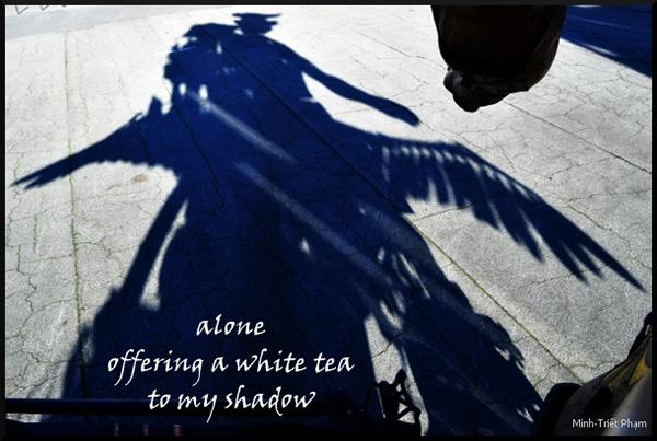 'alone / affering a white tea / to my shadow' by Minh-Triet Pham.  Haiku first published in 'Reflet aveugle / Blind reflection / Bóng hình mù quáng', ISBN 978-2-37355-060-3, Unicité, Saint-Chéron, 2016