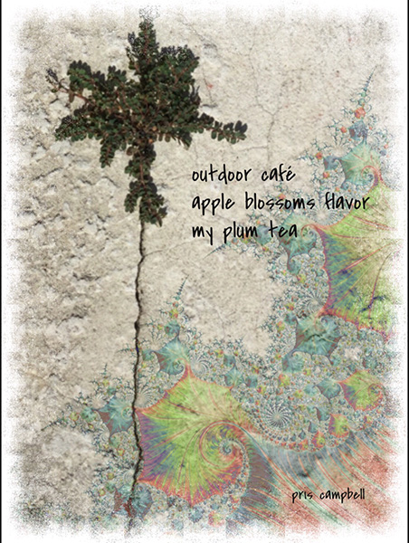 'outdoor cafe / apple blossoms flavor / my plum tea' by Pris Campbell