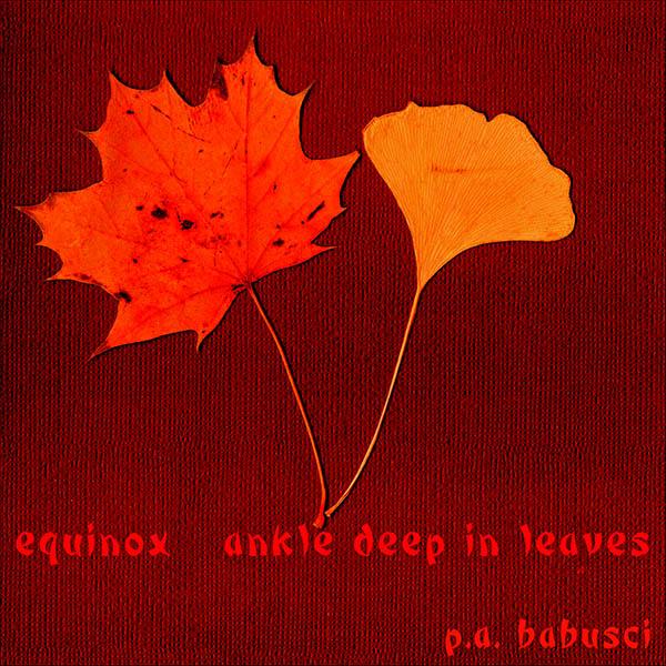 'equinox / ankle deep in leaves' by Pamela Babusci