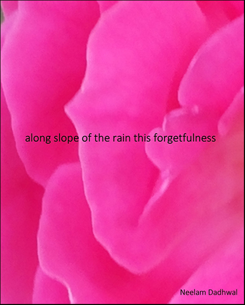 'along the slope of rain this forgetfulness' by Neelam Dadwall
