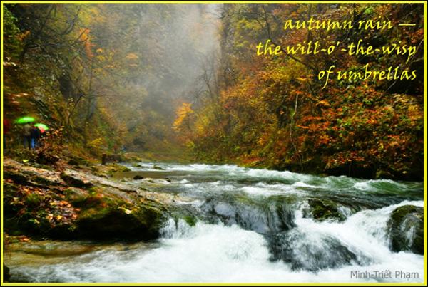 'autumn rain— / the will-o'-the-wisp / of umbrellas' by Minh-Triet Pham