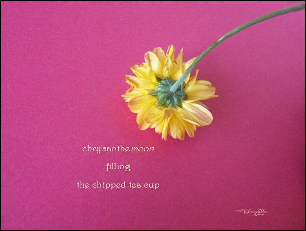 'chrysanthemoon / filling / the chipped the cup' by Steliana Voicu
