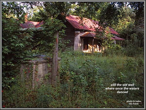 'still the old well / where once the waters / danced' by Ed Rivers