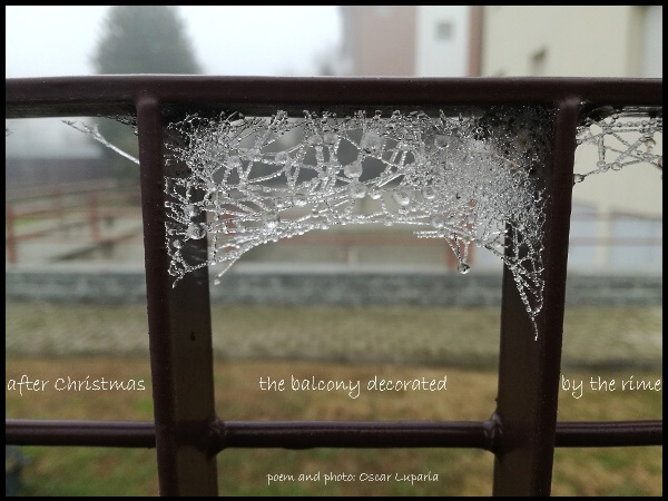 'after christmas / the balcony decorated / by the rime' by Oscar Luparia