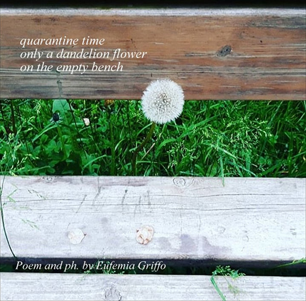 'quarentine time / only a dandelion flower / on the empty bench' by Eufemia Griffo