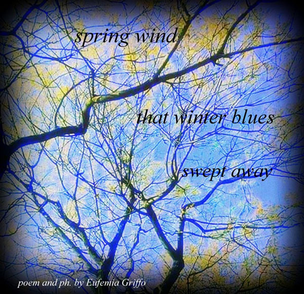 'spring thaw / that winter blues / swept away' by Eufemia Griffo