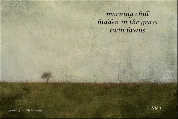 'morning chill / hidden in grass / two fawns' by Nika. Art by Jim McKinnis