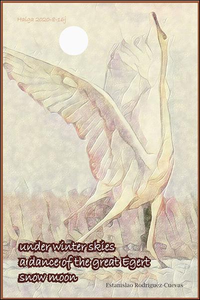 'under winter skies / a dance of the great egret / snow moon' by Estanislao Rodriguez-Cuevas
