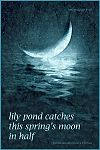 'lily pond catches / this spring's moon / in half' by Estanislao Rodriguez-Cuevas