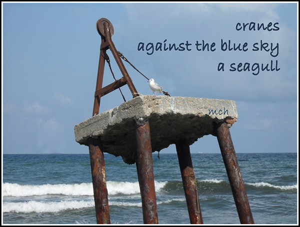 'cranes / against the blue sky / a seagull' by Marta Chocilowska