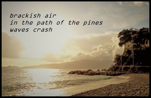 'brackish air / in the path of the pines / waves crash' by Angiola Inglese