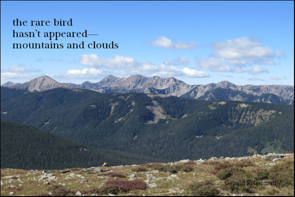 'the rare bird / hasn't appeared— / mountains and clouds' by Gerald Friedman