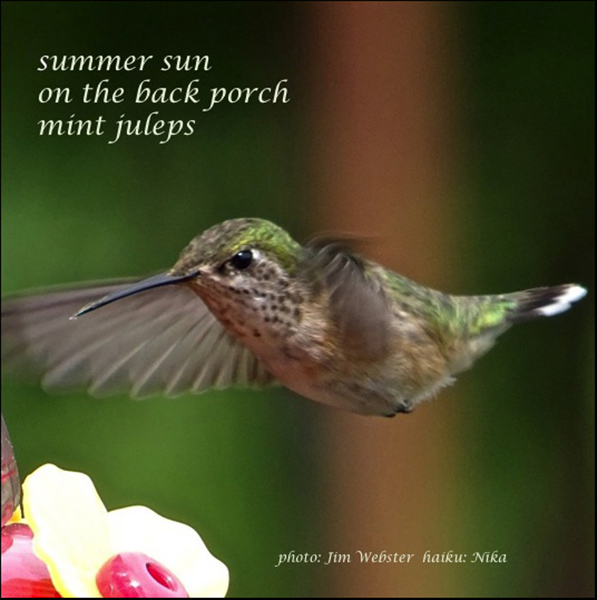 'summer sun / on the back porch / mint juleps' by Nika. Art by Jim Webster