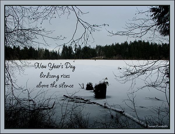 """""""New Year's day / birdsong rises / above the silence"""" by Susan Constable"""