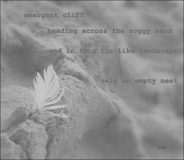 """emergent cliff / heading across the soggy sand / and in this tin-like landscape / only an empty nest' by Leszek Szeglowski"
