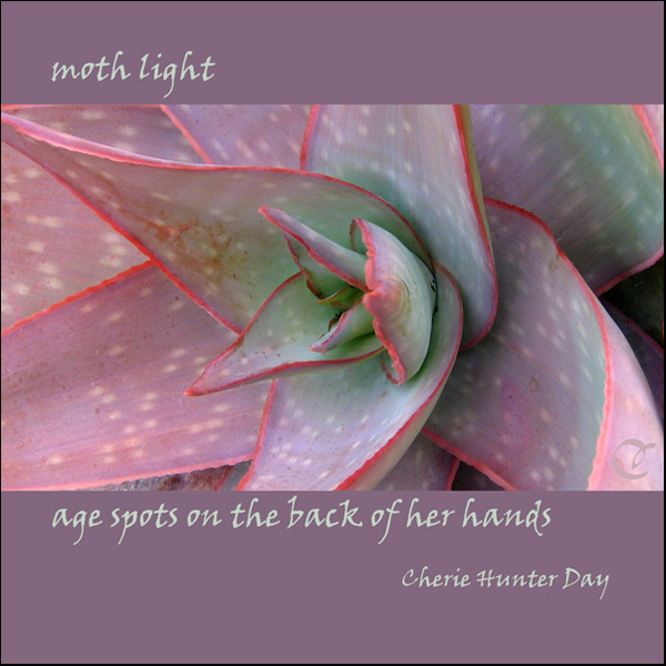 'moth light /  age spots on the back of her hands' by Cherie Hunter Day