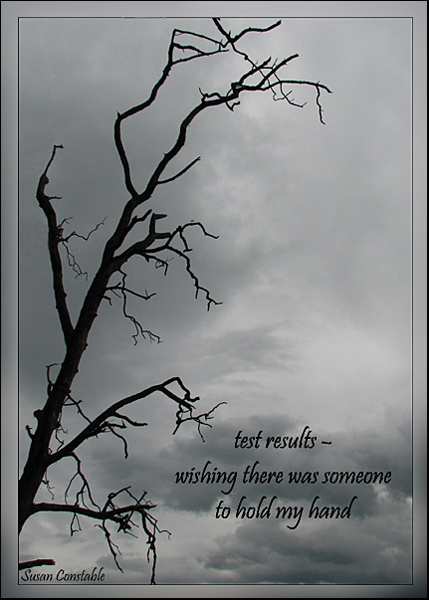 'test results� / wishing there were someone / to hold my hand' by Susan Constable