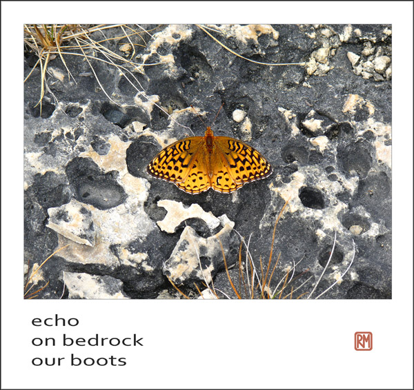 'echo / on bedrock / our boots' by Ruth Mittleholtz.