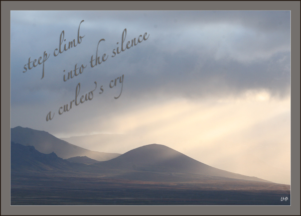 'steep climb / into the silence / a curlew's cry' by Linda Pilarski