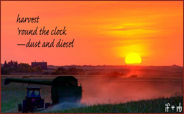 harvest / 'round the clock / �dust and diesel' by Ignatius Fay. Art by Ray Belcourt