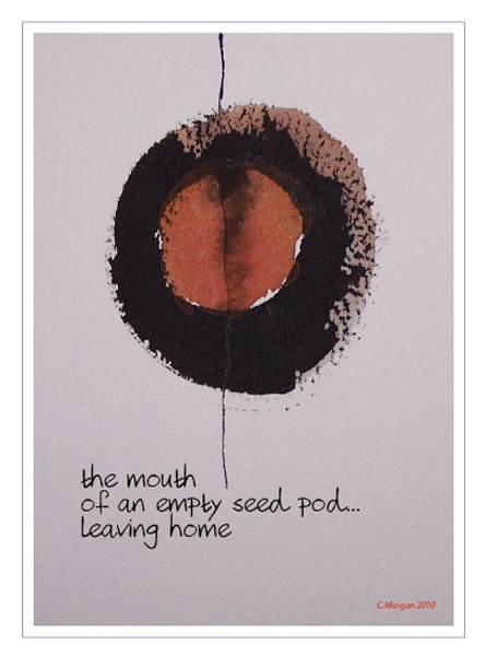 'the mouth  /of an empty seed pod... / leaving home' by Carolyn Morgan