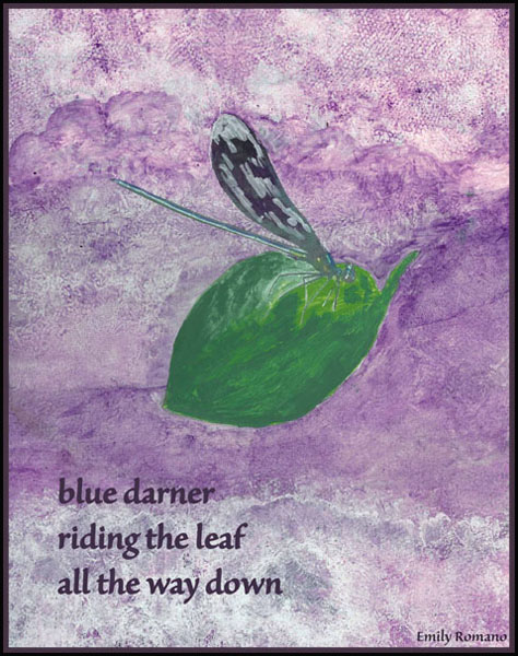 'blue darner / riding the leaf / all the way down' by Emily Romano