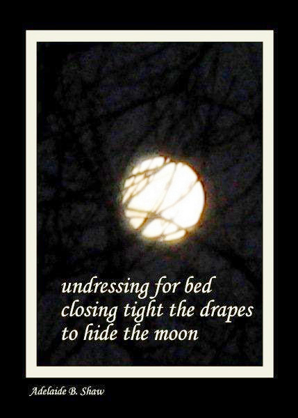 'undressing for bed / closing tight the drapes / to hide the moon' by Adelaide Shaw