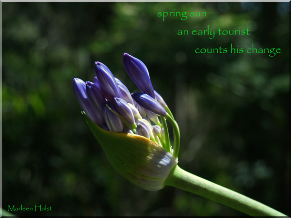 'spring sun / an early tourist / counts his change' by Marlene Hulst.  This haiku was first published in Blithe Spirit volume 20 #2, 2010.