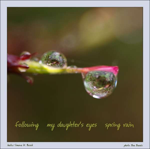 'following / my daughter's eyes / spring rain' by Simone Busch and Bea Bareis
