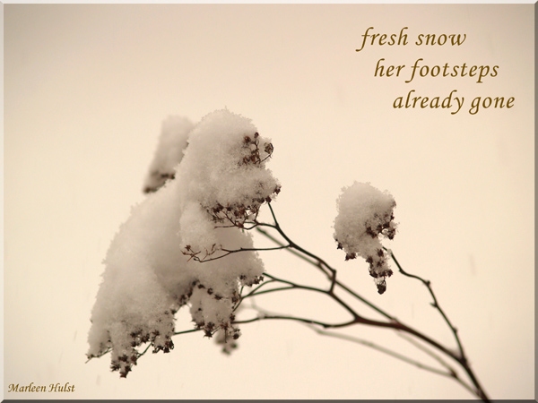 'fresh snow / her footsteps / already gone' by Marlene Hulst