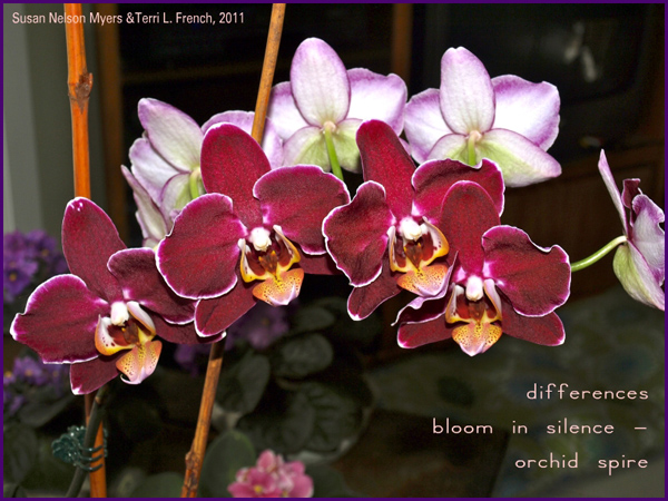 'differences / bloom in silence� / orchid spire' by Terri French