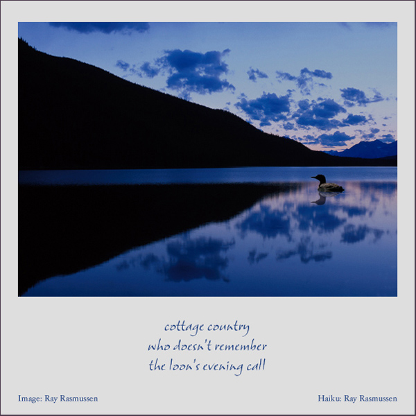 'cottage country / who doesn't remember / the loon's evening call' by Ray Rasmussen