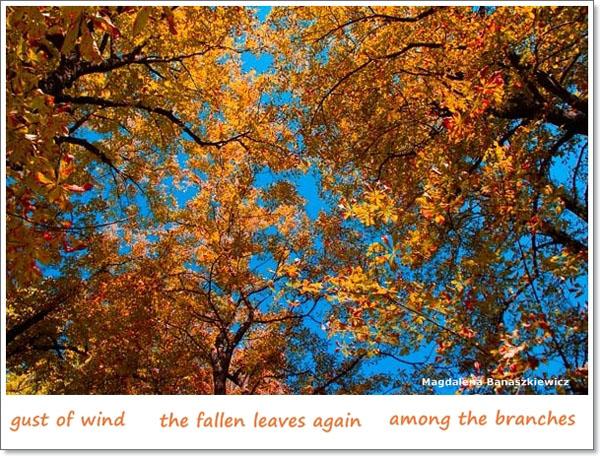 'gust of wind / the fallen leaves again / among the branches' by Magdalena Banaszkiewicz. Art by Malgorzata Banaszkiewicz. Translated by Rafal Zabratynski
