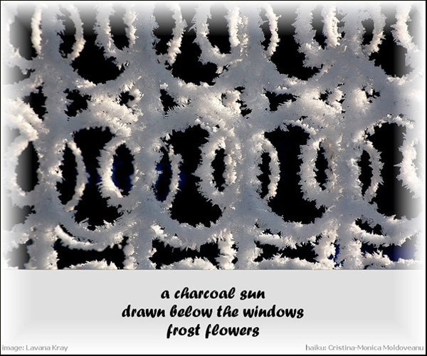 'a charcoal sun / drawn below the windows / frost flowers' by Cristina-Monica Moldveanu. Art by Lavana Kray.