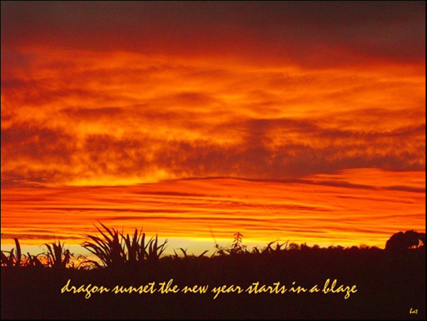 'dragon sunset the new year starts in a blaze' by Barbra Taylor.