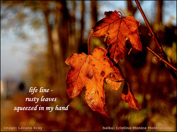 life line� / rusty leaves / squeezed in my hand' by Cristina-Monica Moldveanu. Art by Lavana Kray.