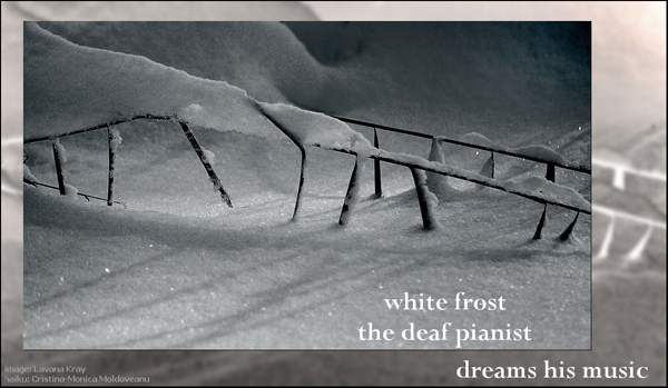 'white frost / the deaf pianist / dreams his music' by Cristina-Monica Moldoveanu. Art by Lavana Kray.